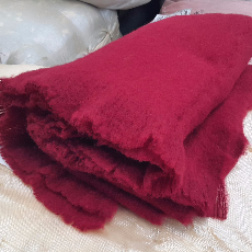 Red Blanket-455